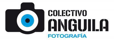 Colectivo Anguila: nueva web
